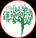 Positive Brain Health Now Logo